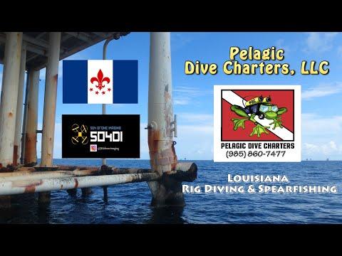 Pelagic Dive Charters, LLC - Louisiana Rig Diving & Spearfishing