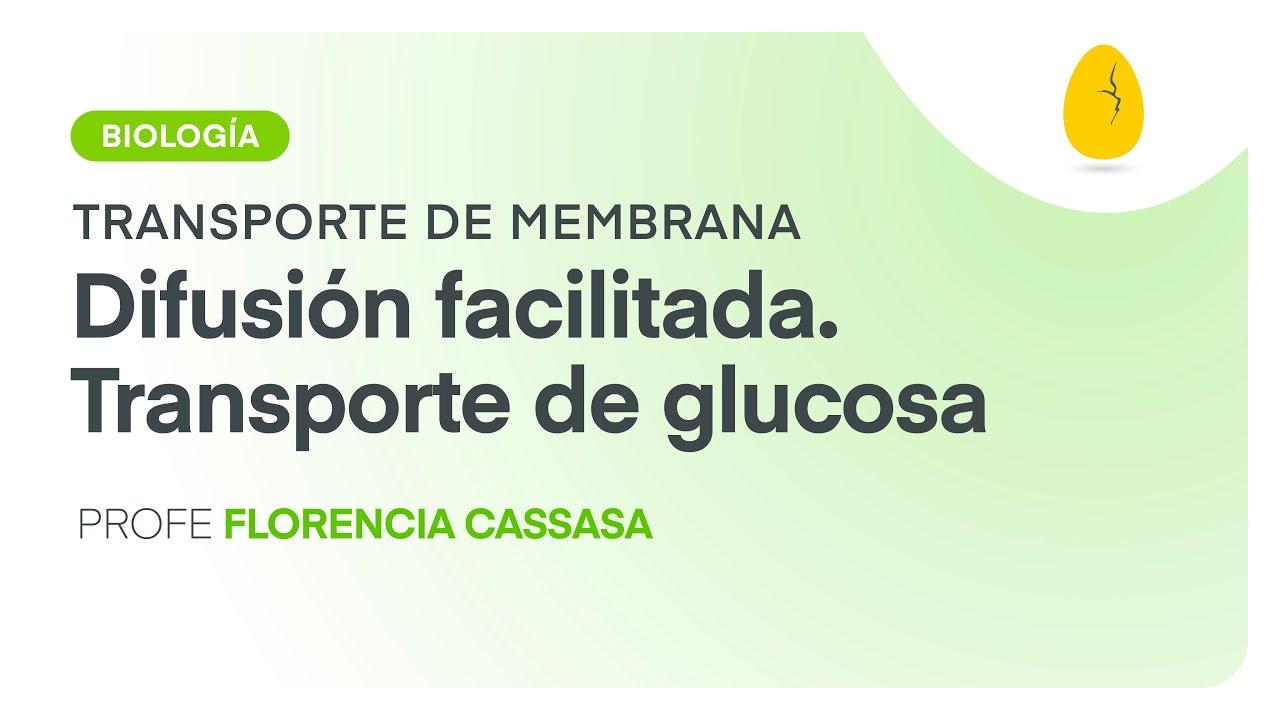 prueba de diabetes de proteínas de transporte de glucosa
