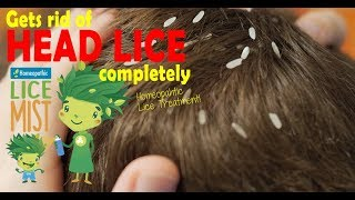 How To Check For Lice and Remove Lice, GreenBeanBuddy