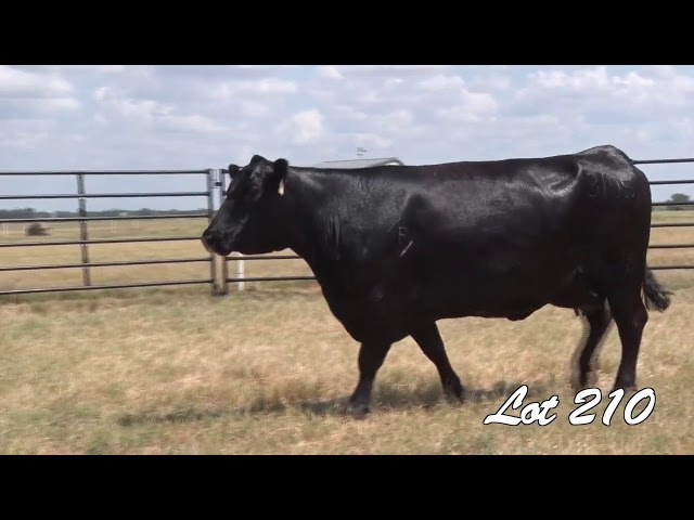 Pollard Farms Lot 210