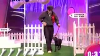 Ant Vs Dec-puppy Training Pt2