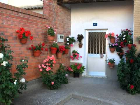 patios y jardines youtube