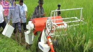 GANGYI harvesting demonstration of Mini Combine Harvester in Vietnam