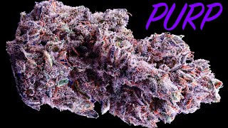 INSANE PURPLE WEED!! The Concentrates Are SO DANK!! screenshot 3