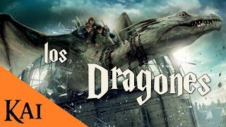 Los Dragones de Harry Potter