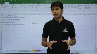 MS Excel - Working with Worksheets