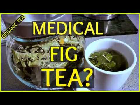 Medical Fig Tea Really A Cure For All