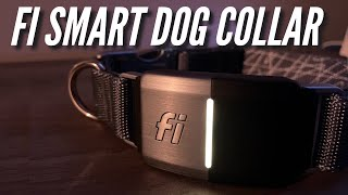 Fi Smart WiFi GPS Dog Collar: Unboxing, Setup, Review