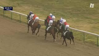 Vidéo de la course PMU PRIX DU PIC HARDI