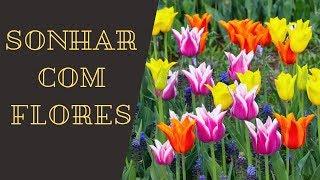 Significado de Sonhar Com Flores! (SAIBA TUDO)