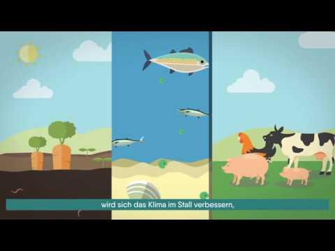 EM - Eine mikrobielle Lösung zur Rettung der Erde
