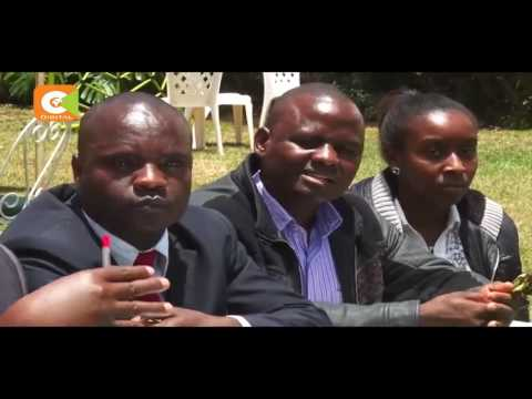 Miraa farmers meet Agriculture CS to discuss crop's dwindling fortunes