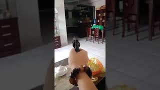 Clip đánh nhau - Giang hồ thử súng
