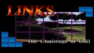 Links: The Challenge of Golf gameplay (PC Game, 1990)