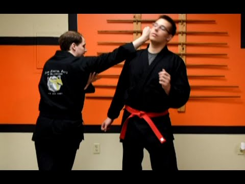 Shaolin Kempo Karate Combination 2