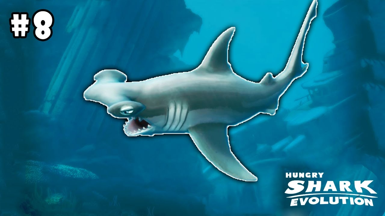 hungry shark evolution by future games of london android hungry shark evolution by future games of london android gameplay part 8 hd