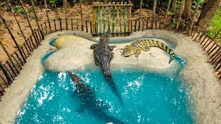 Build Crocodile Pond and Feeding Wild Crocodile