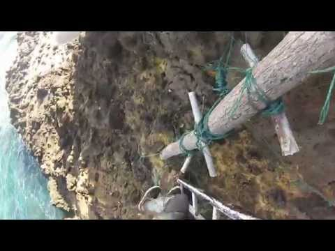Norfolk Island Spearfishing update 3