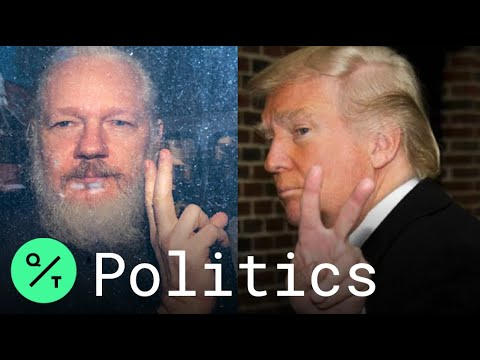 Former congressman offered Trump pardon to Julian Assange in ...