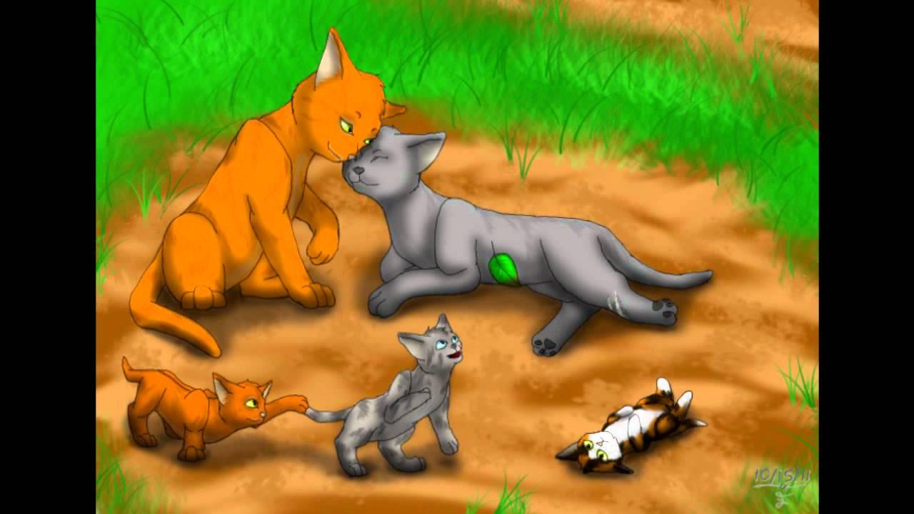 Cinderpelt Warrior Cats