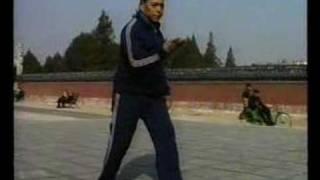 Feng Zhiqiang Chen Taiji 馮自強 陳式太極拳