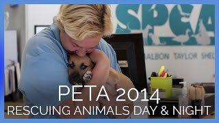 Meet Peta's Rescue Team And Some Of The Animals They've Helped