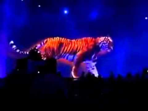 Bluebeam Project  Hologram Technology 3D Tiger ,MUST SEE !!