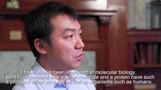 Chao Lu, PhD