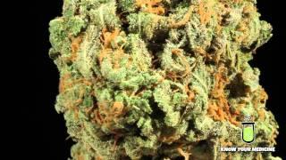 Cannabinoid Profile: Cbd