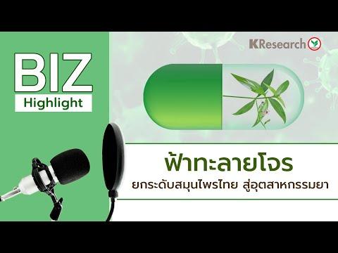 ฟ้าทะลายโจร ยกระดับสมุนไพรไทย สู่อุตสาหกรรมยา