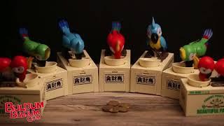 Para Yiyen Papağan Kumbara - Parrot Piggy Bank