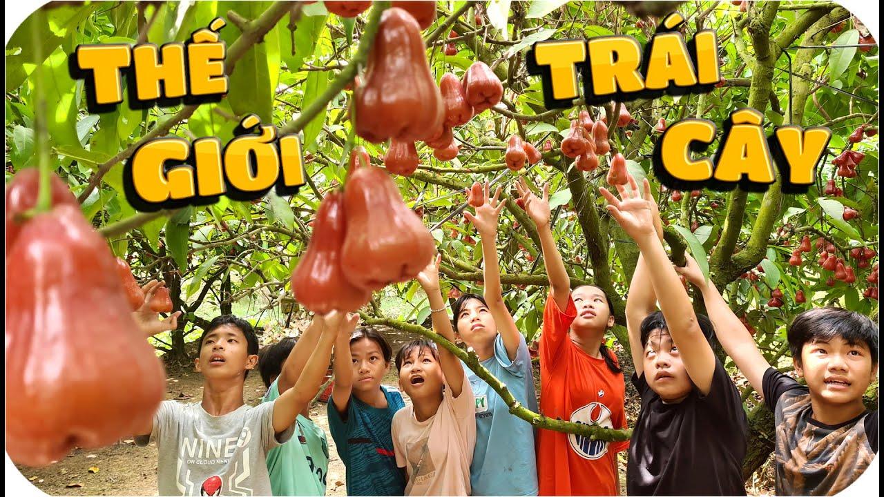 Tony | Dẫn Team Đại Náo Vườn Trái Cây Sa Đéc
