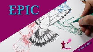 Epic Drawing of Hummingbird   رسمة رائعة للطائر الطنان