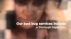 Oak Park, MI Exterminator for Bed Bugs - Hi-Tech Pest Contr