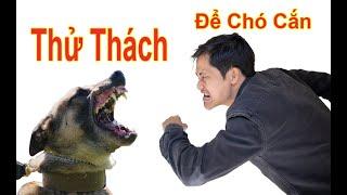 THỬ THÁCH - Để chó cảnh sát cắn và cái kết / Hùng Chó Channel