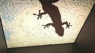 Монтаж натяжных потолков с подсветкой(http://potolki-vmoskve.ru/ Монтаж натяжных потолков с подсветкой. Наша компания уже более 10-ти лет занимается установко..., 2016-07-24T14:11:36.000Z)
