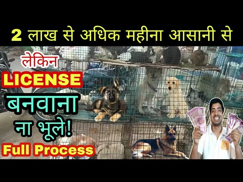 How to make licence before starting DOG BREEDING