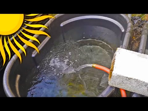 HOW TO: Easy DIY Fish Ponds With 100 Gallon Rubbermaid Tubs