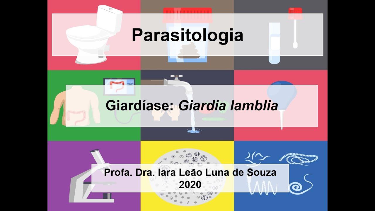 malária giardiasis toxoplazmózis)