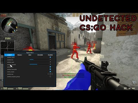 How to Make A CSGO Hack/Paste (UNDETECTED)