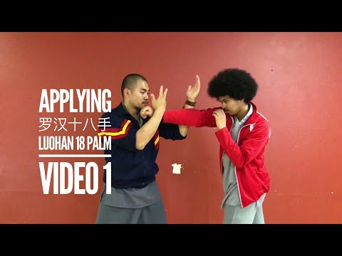 Kung Fu Applications | Luohan 18 Palm  | Part 1