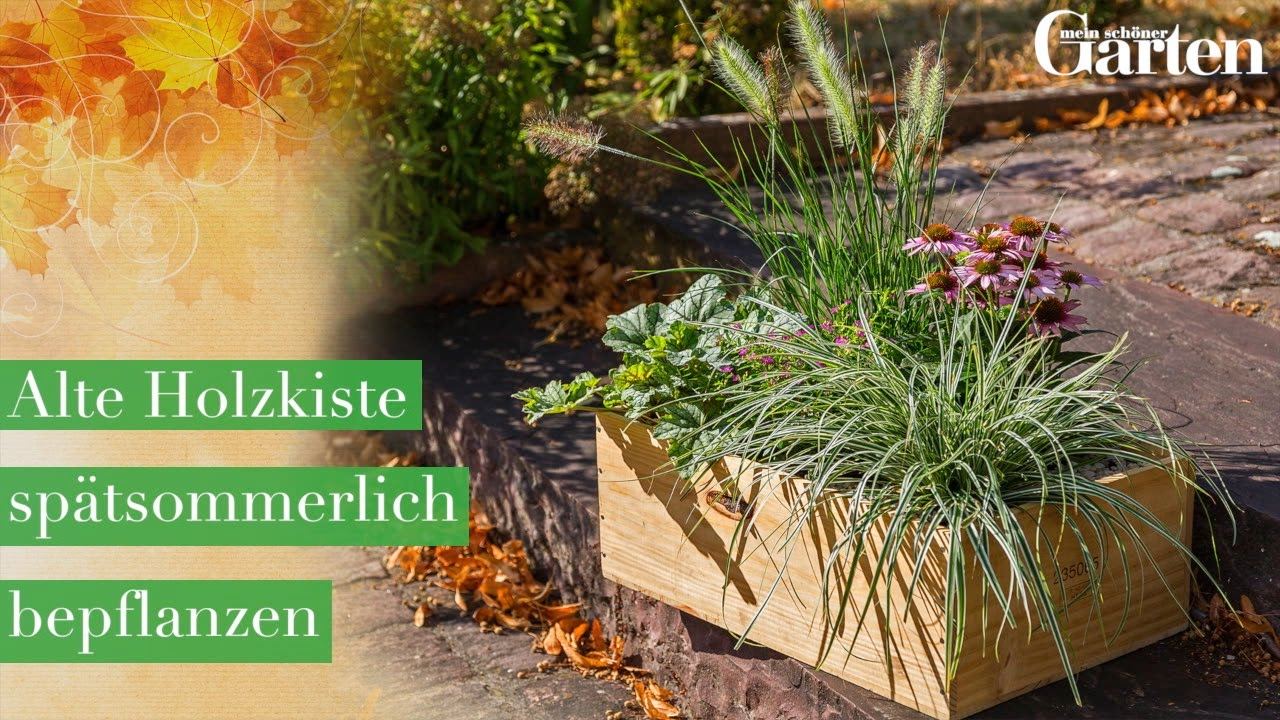 Gartentipp: Alte Holzkiste spätsommerlich bepflanzen - YouTube