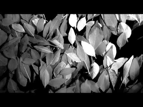 Rosetta - Itinerant
