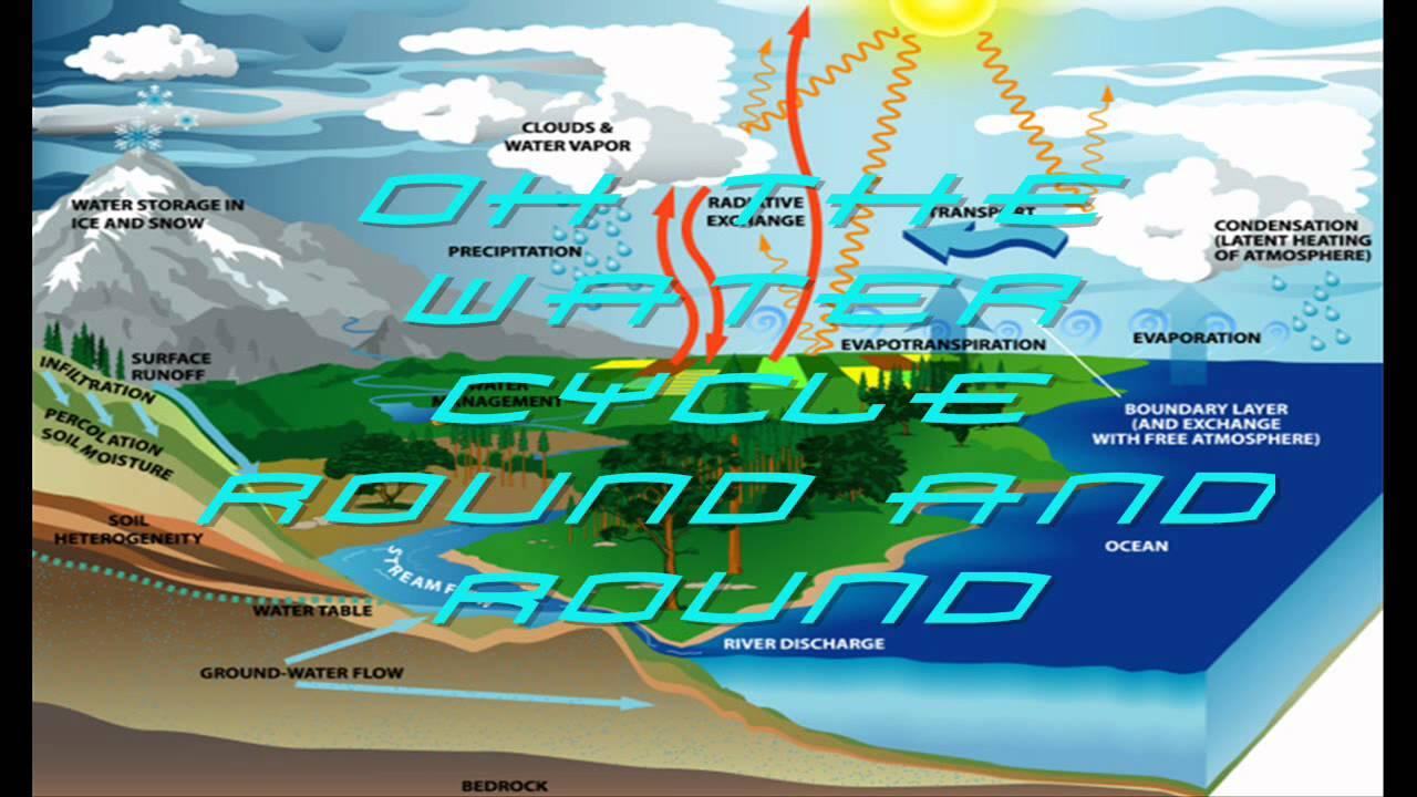 cool water cycle song lyrics youtube