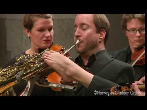 W. A. Mozart: Horn Concerto No. 2 in E-flat major, K. 417, III. Rondo - allegro