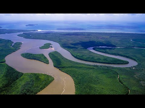 cairns---daintree-rainforest