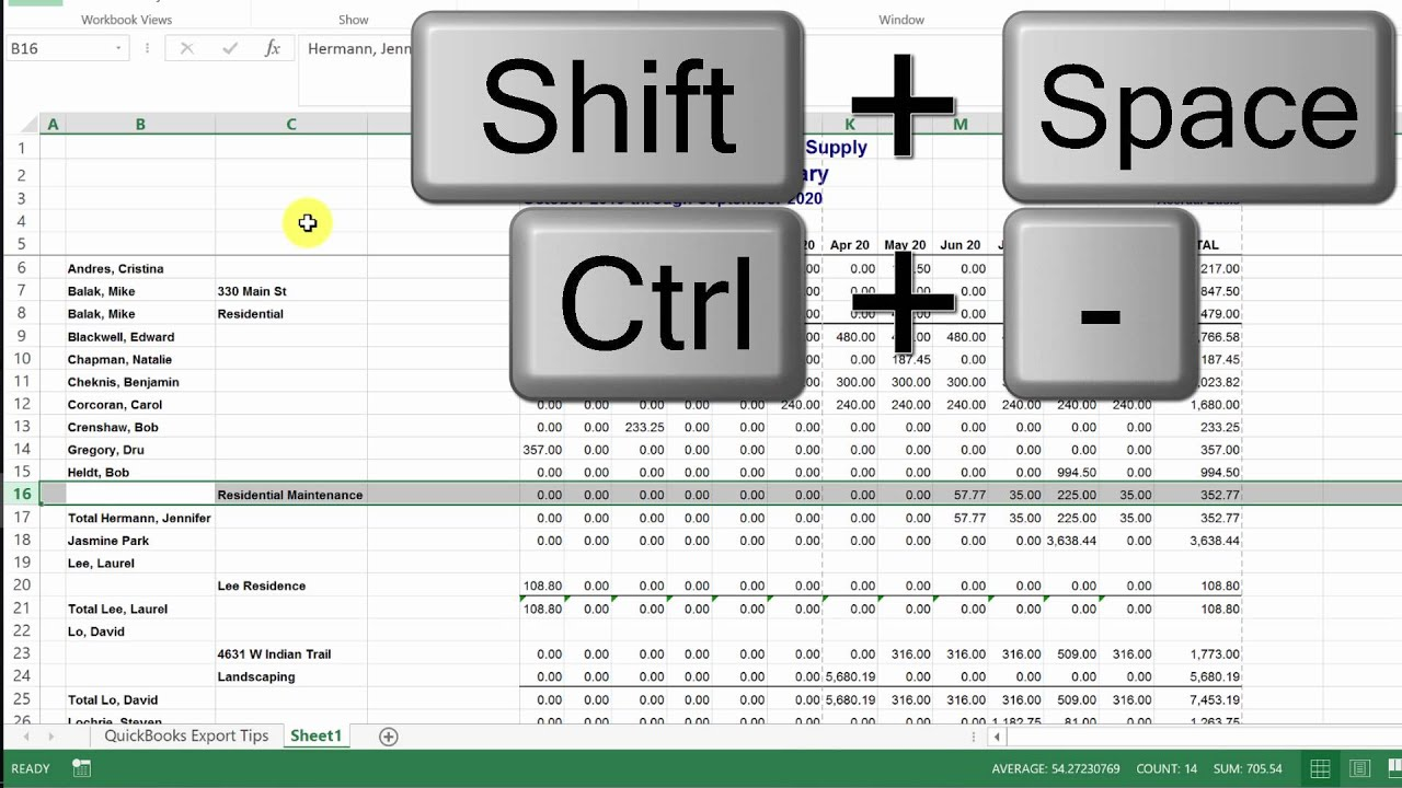 How to Project Sales by Customer from QuickBooks in Microsoft Excel ...