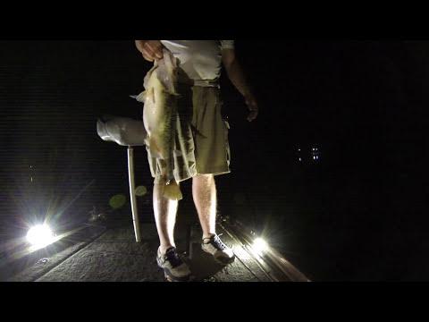 Lake Gilmer Monster Black Bass