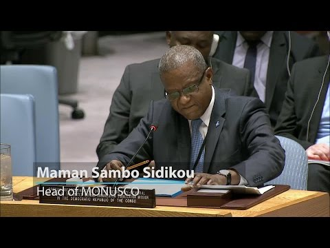 Special Representative briefs the Security Council on bridging the political gap in the DRC