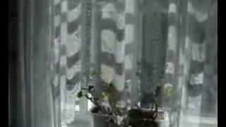 Отдых в Одессе 2010, Одесса частный сектор(http://allodessa.com.ua | +38-094-949-08-86 Фотографии объекта для аренды на летний период. Все удобства, кондиционер дом моря..., 2008-11-21T16:49:24.000Z)